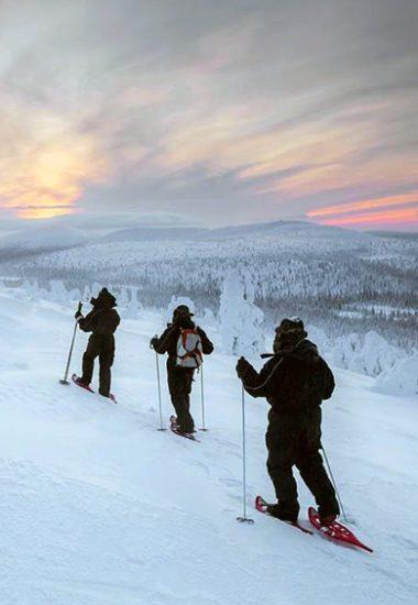 Die Berge beim Pallastunturi-Nationalpark