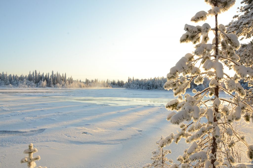 Dreaming in Lapland