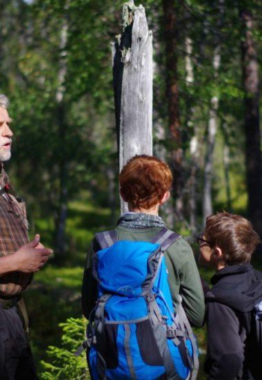 Lär Dig om Lapplands natur